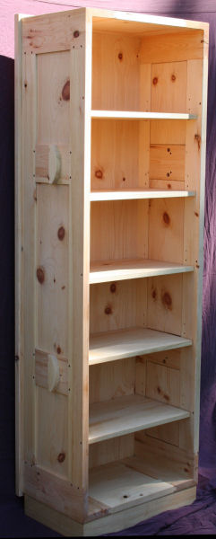 Frame and Panel Coffin with Bookcase Insert